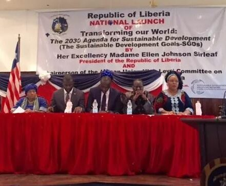 A special roundtable hosted by IPU in the Liberian capital, Monrovia, on 30th January attended by a UN-appointed high-level panel and MPs from around the world concluded that democracy and democratic governance should be at the heart of a new international development agenda.