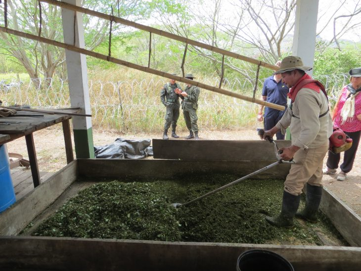 Demonstration of cocaine production at anti-narcotics training centre