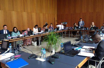 Seminar sessions at the House of Parliaments (IPU Secretariat) in Geneva