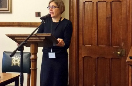 Professor Sarah Childs explains the key objectives of her secondment to the UK House of Commons