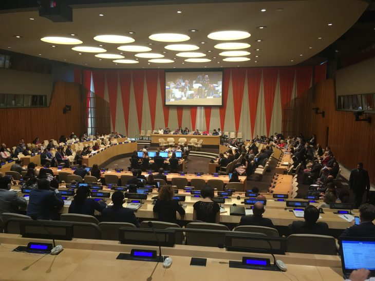 The Development Cooperation Forum underway in the EcoSoc Chamber at the UN
