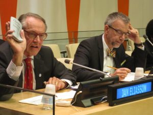 UN DSG Eliasson addresses the Annual Parliamentary Hearing