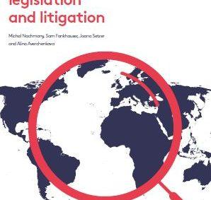 The study has been co-published by the Grantham Research Institute, the Sabin Center for Climate Change Law of the Columbia School of Law, the IPU and The Centre for Climate Change Economics and Policy.
