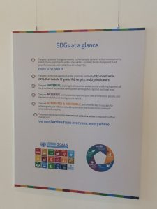 The SGDs at a glance