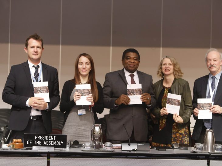 Launch of a Handbook for Parliamentarians on Freedom of expression for parliaments and their members: Importance and scope of protection.