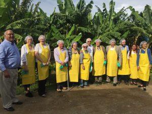 UK Delegation visit a banana plantation shipping to UK supermarkets