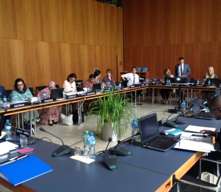 Group sessions in the House of Parliaments (IPU SEcretariat)
