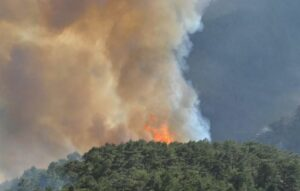 Forest fires in Turkey August 2021 ©Omer Kundakci / Anadolu Agency via AFP